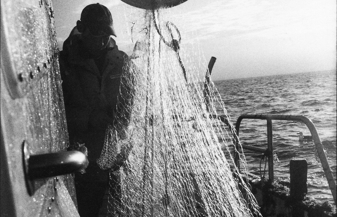 Exposition Pêche en mots salés